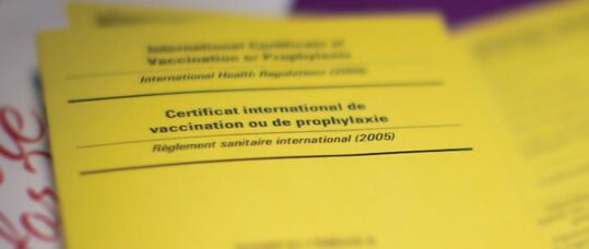 How To Become A Yellow Fever Centre Nursing In Practicenursing In Practice