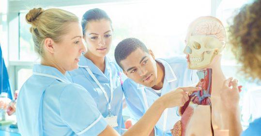 Student nurses looking at skeleton