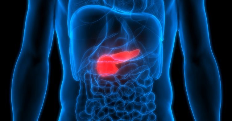 Type 2 diabetes remission restores pancreas to 'near health'